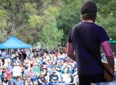 Bullers Winery - Rock In The Vines Festival